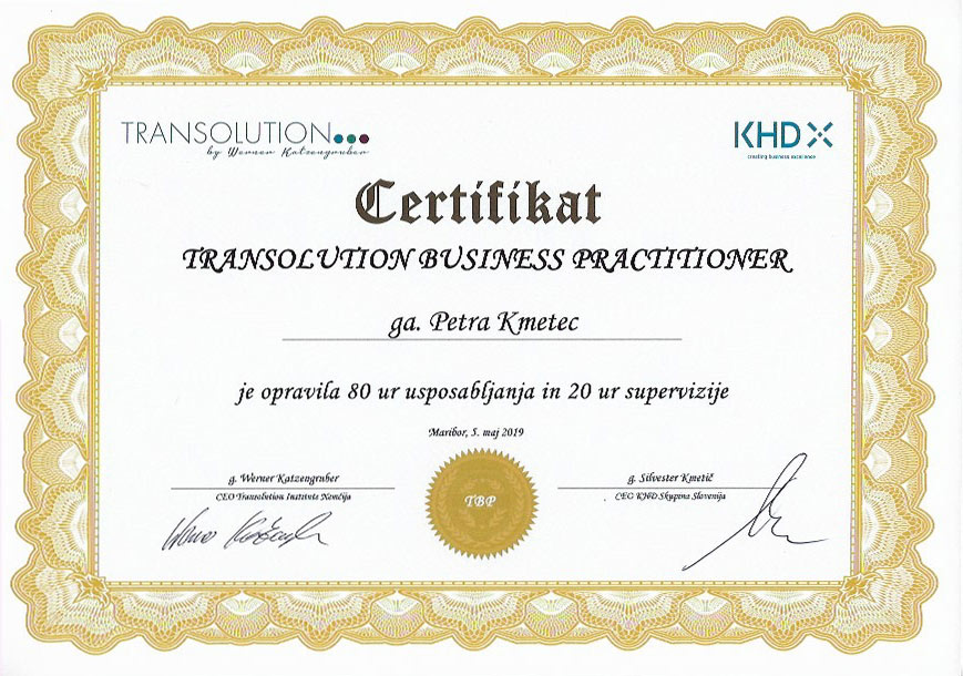 Transolution business practitioner